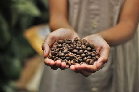 tipi di miscele di caffè