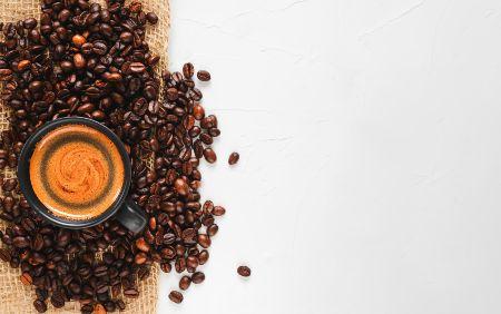 caffè borbone espresso point