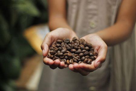 tipi di caffè in capsule