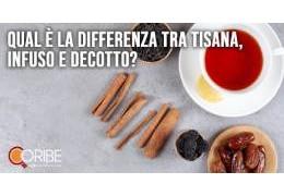 Qual è la differenza tra tisana, infuso e decotto? Definizione e caratteristiche peculiari delle tre bevande